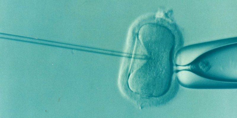 Leeds University research suggests new IVF technique is no more effective than previously available treatments
